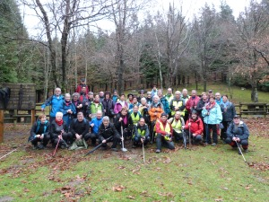 Area forestal (3)